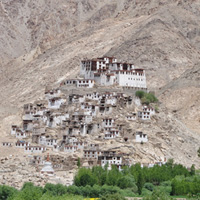 Tour India: Kashmir & Ladakh (Gustor Festival): Viaggi in India 2015